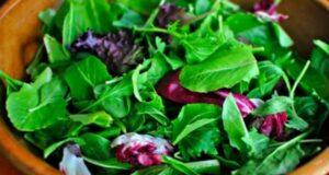 10 Receitas de Salada de Folhas
