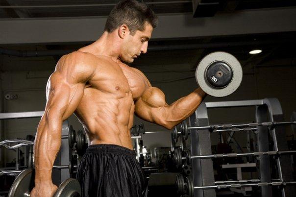 Os 5 maiores erros no treino de bíceps e como corrigi-los